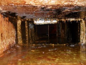 commercial kitchen grease duct cleanup cedar park tx